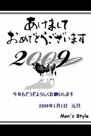 2009-1-1.jpg